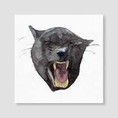 Animal - Panther